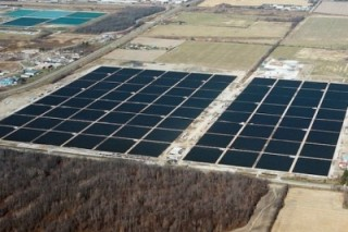 Компания из Германии намерена возвести в Запорожской области солнечную электрическую станцию