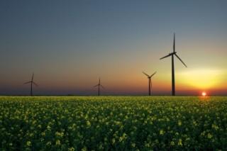 На территории Мордовии в возведении «умного дома» применят технологии ветряной электростанции
