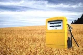 Наблюдается рост производства биотоплива