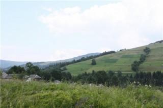 В прикарпатской деревушке запустили гидроэлектростанцию стоимостью в сто миллионов гривен