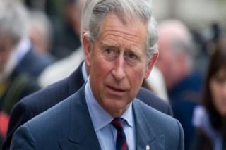 Принц Чарльз и Ротшильд – за зеленую энергетику
