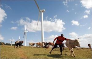 Кенийская ветряная ферма будет производить самую дешёвую электроэнергию