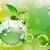 «Экологическая устойчивость» и «экологическое развитие» в основе устойчивого развития. Часть 1