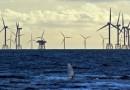 Крупнейший ветропарк в мире сдан в эксплуатацию