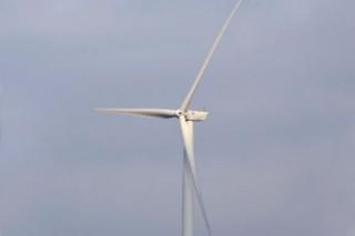 Шведская компания установит ветряные турбины на западном побережье