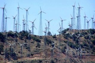 Вредно ли жить рядом с ветроэлектростанциями?