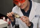 Ученые разработали дешевую и высокоэффективную солнечную технологию