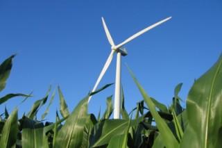 Строительство ветропарка Милл Крик в Новой Зеландии