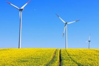 85% глобальных потребителей хотят больше возобновляемой энергии