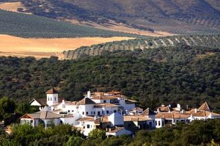 Отдых в Испании позеленел