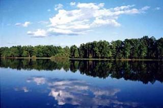 В Башкирии занялись экологической реабилитацией озера Шамсутдин