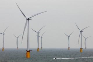 50% энергопотребления Шотландии будет покрываться за счет зеленой энергии