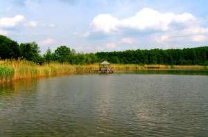 В заповеднике «Ягорлык» перезахоронение химикатов решили отложить до весны