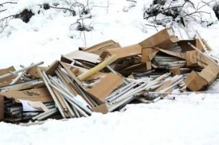В русло ручья на Камчатке выбросили 6,5 тысяч опасных люминесцентных ламп