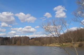 «Тульский сплав» был уличен в загрязнении ручья и реки