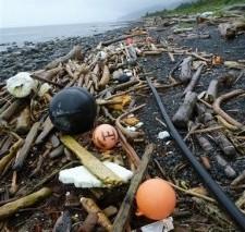Большое количество мусора от цунами в Японии ждет Западное побережье США