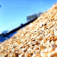 На Ямале будет построена теплоэлектростанция, работающая на древесной биомассе