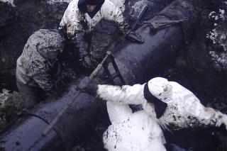 Гринпис — в России происходит половина всех прорывов нефтепроводов в мире