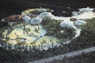 За пределами города власти Санкт-Петербурга, возможно, будут строить новый зоопарк