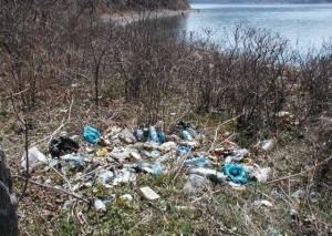 В Томске вблизи реки Обь запретили строить полигон бытовых отходов