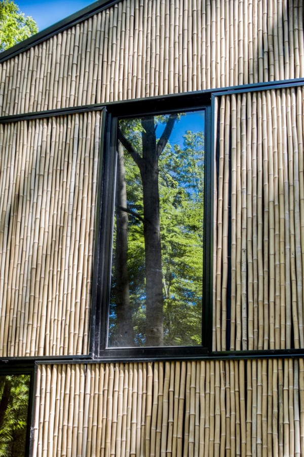 Энергоэффективный дом необычного формата