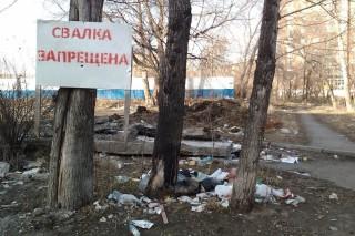В Красноярске будут устанавливать видеокамеры на несанкционированных свалках
