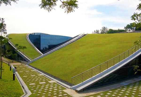Школа искусств и дизайна в Сингапуре