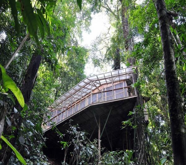 Уникальная деревня в тропическом лесу