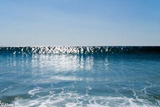 Новая Зеландия и Соединенные Штаты Америки тайным образом создавали цунами