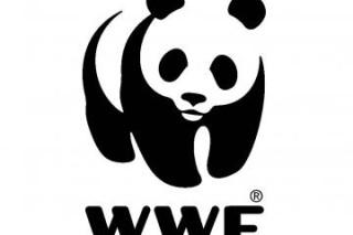 В 2012 году российскому WWF компании пожертвовали 1 200 000 Евро