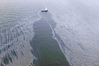 Грозит ли экологическая катастрофа Аляске?