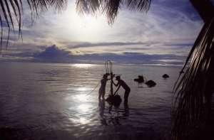 О поведении феномена Эль-Ниньо могут рассказать кораллы