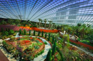 Крупнейшая в мире оранжерея с искусственным микроклиматом