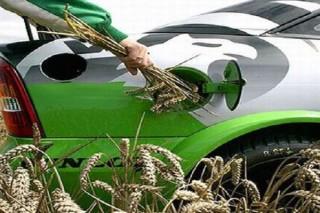 Ученый из Британии заявил, что биотопливо опасно для жизни