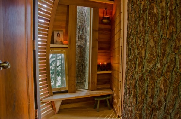 Дом на дереве в канадских лесах