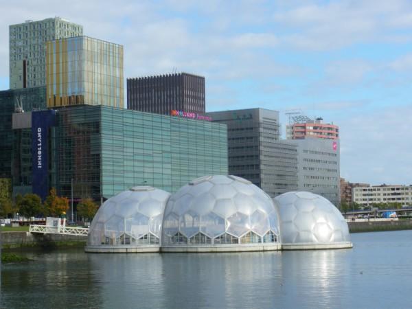 Роттердам готовится к возможному повышению уровня мирового океана, и этот проект - один из первых городских объектов, готовых с легкостью пережить эту напасть. В нем будут проводить мероприятия, посвященные вопросам экологии.