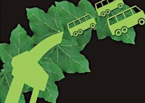 Исследование — качество урожайности и воздуха ухудшает производство биотоплива