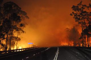 В Австралии лесные пожары все ближе подходят к жилым домам