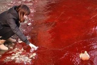 На Донбассе неизвестные химикаты смогли «убить» реку