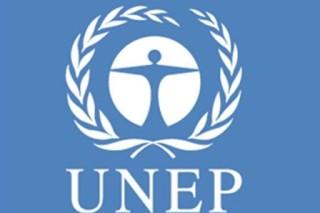 В докладе ООН обозначен рост вредного воздействия химикатов на человека