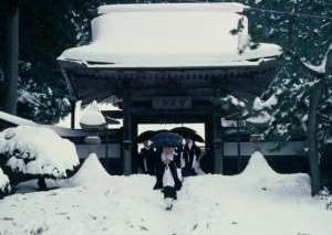 В Японии главный предсказатель погоды вышел из строя