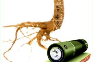 Экологическая литий-ионная батарея была создана из корня растений