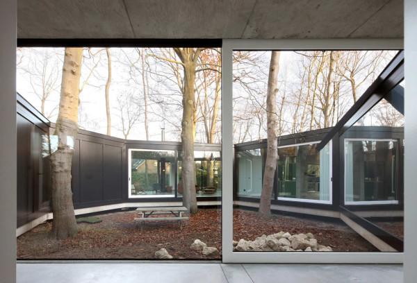 Дом вокруг леса