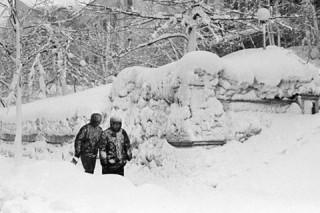 Из-за невиданной снежной бури на Камчатке были отложены авиарейсы и объявлена опасность схода лавин