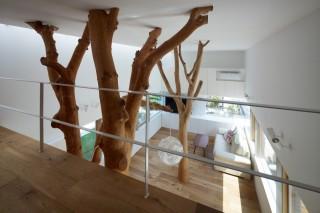 Построить дом, посадить в нем дерево…
