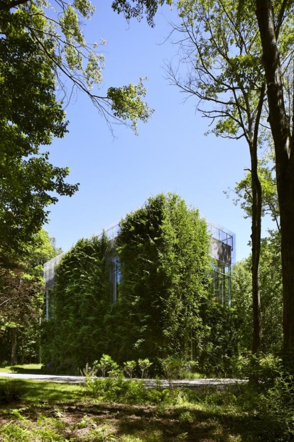 Зеленая вилла в Коннектикуте