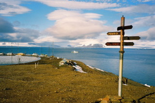 Российским студентам заплатят по 60 тысяч рублей за уборку Арктики