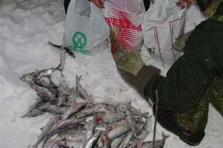 В центральной европейской части России любителям подводного лова можно будет рыбачить до конца марта