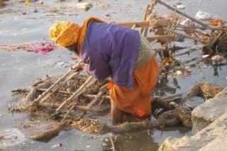 На грани краха находится Индийская экология