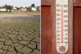 В борьбе с сильным потеплением ученые смогли найти «союзника»